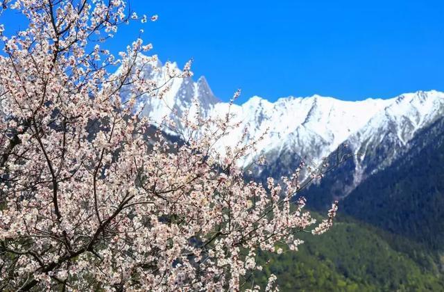 春季西藏旅行攻略